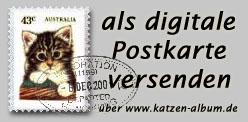 Postkarten bei www.katzen-album.de